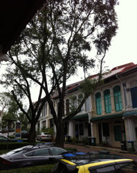 Shophouses Along Emerald Hill