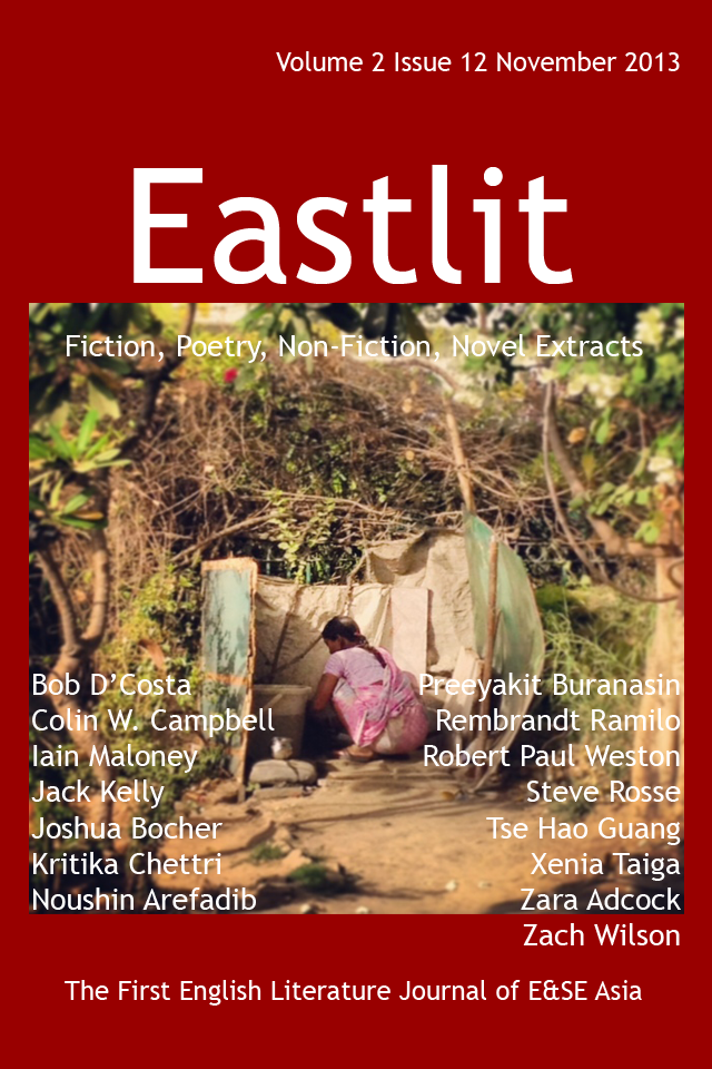 """Eastlit November 2013 Cover. The cover was designed by Graham Lawrence. The cover picture is """"Working Woman"""". I was taken by Noushin Arefadib. Copyright Eastlit and Photographer."""